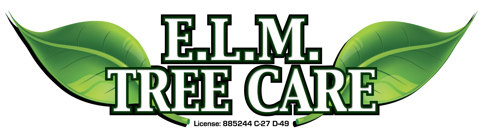 ELM Tree Care